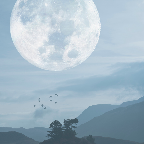 Picture of a large moon