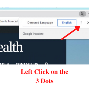 step 2- Click on 3 dots at top of screen in Translate box